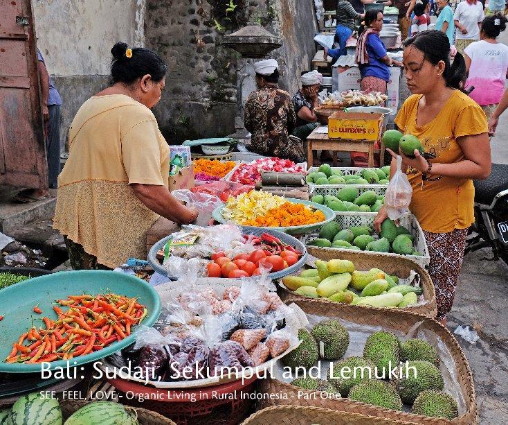 View Bali: Sudaji, Sekumpul and Lemukih by Melanie E. Rijkers