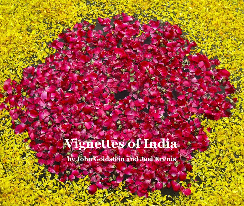 View Vignettes of India by John Goldstein and Joel Krenis