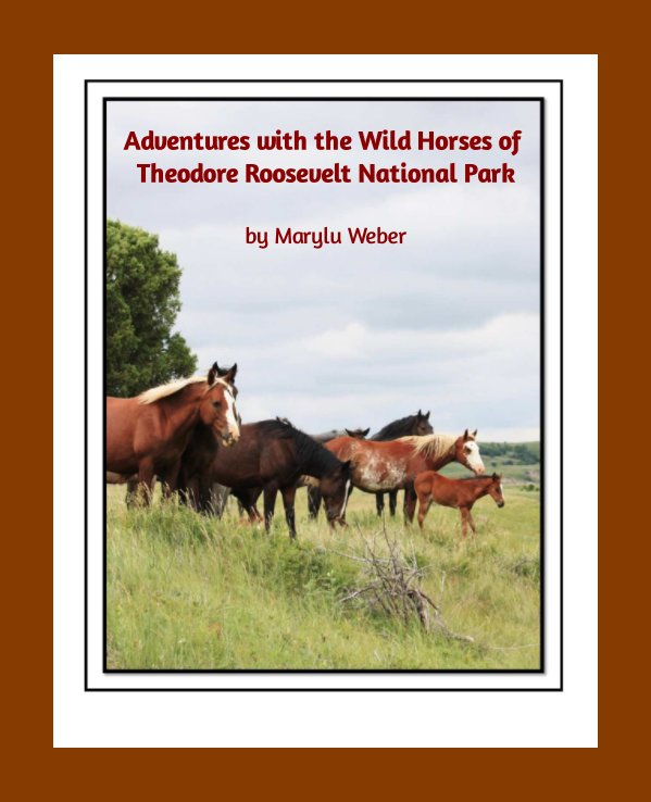 View Adventures with the Wild Horses of Theodore Roosevelt National Park by Marylu Weber