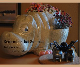 Remember that Summer book cover