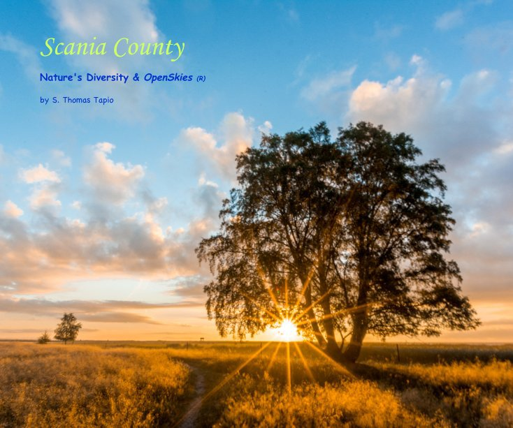 View Scania County by S. Thomas Tapio