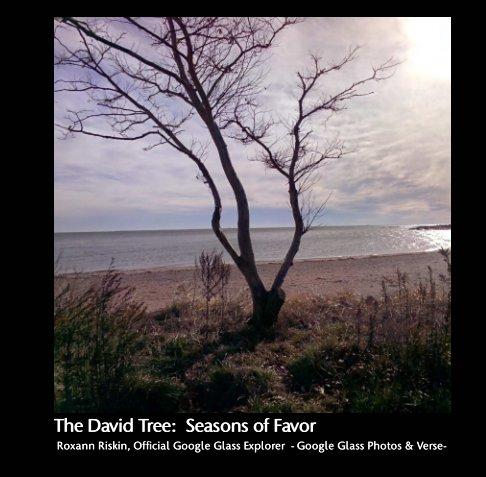 View The David Tree:  Seasons of Favor by Roxann Riskin Official Google Glass Explorer