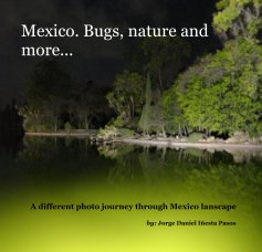 Mexico Bugs, nature and more book cover
