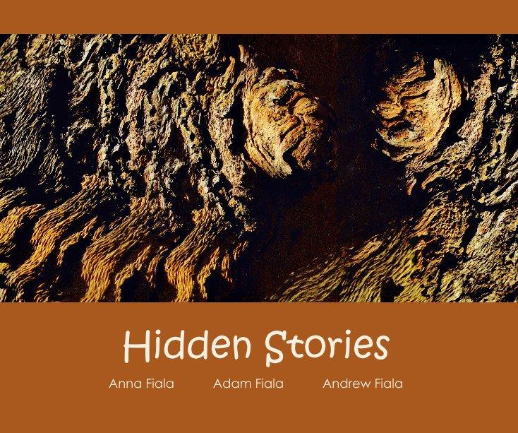 View Hidden Stories by Anna Fiala Adam Fiala Andrew Fiala
