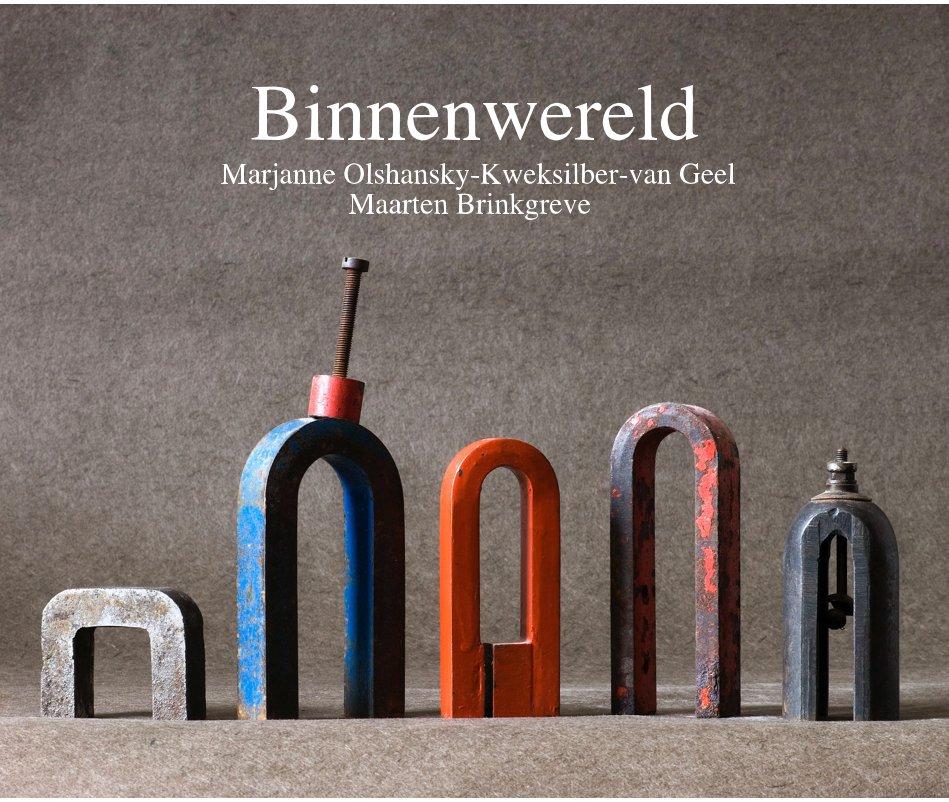Bekijk Binnenwereld Marjanne Olshansky-Kweksilber-van Geel Maarten Brinkgreve op Maarten Brinkgreve