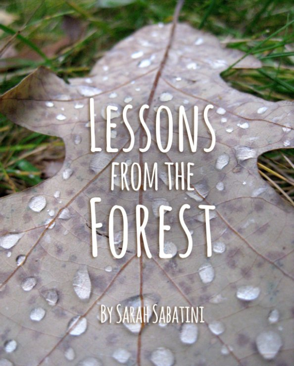 View Lessons from the Forest by Sarah Sabatini