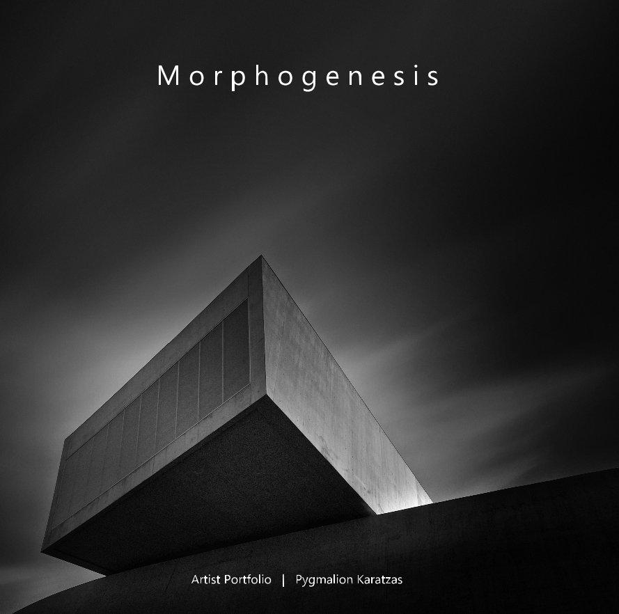 View Morphogenesis by Pygmalion Karatzas