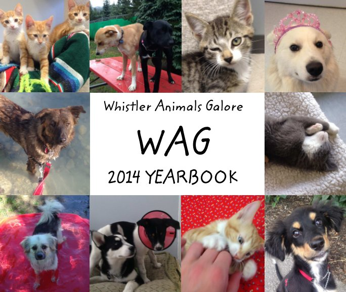 View Whistler Animals Galore WAG by Catherine Mazza c/o WAG