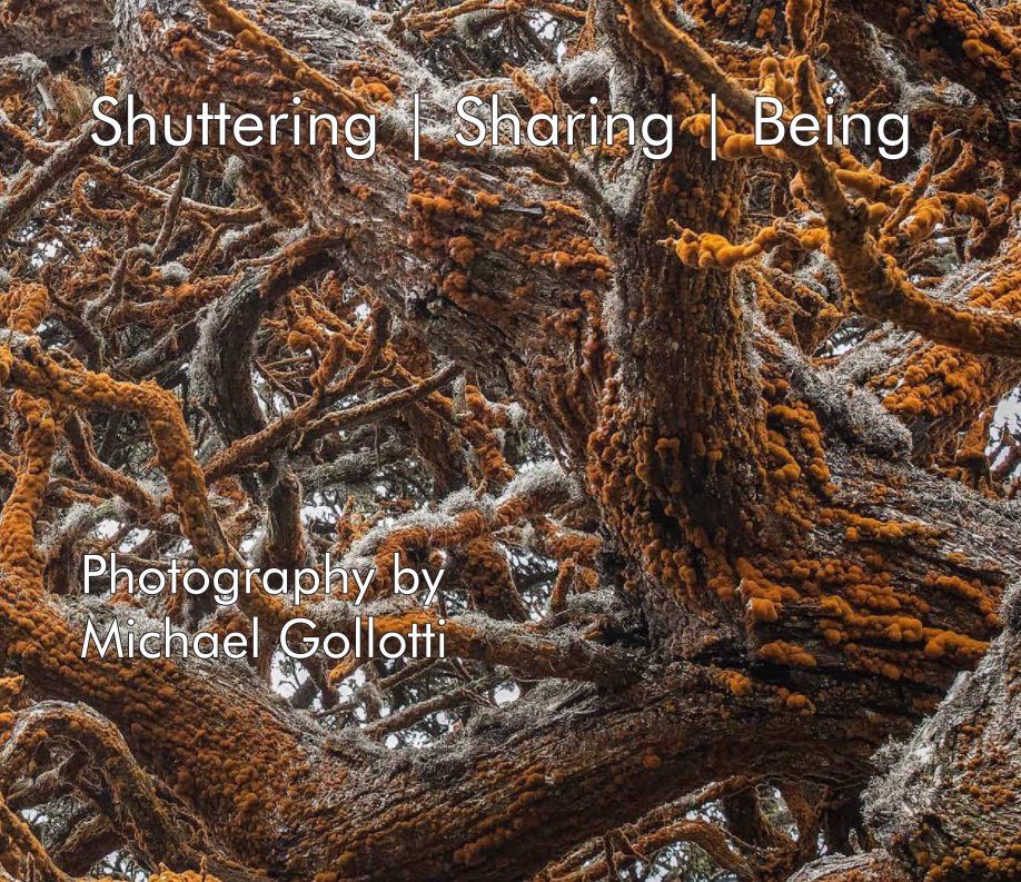 View Shuttering / Sharing / Being by Michael Gollotti