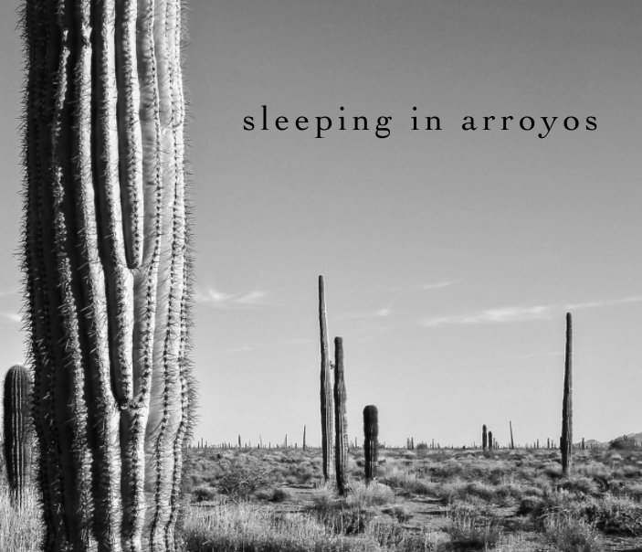 View sleeping in arroyos (winter 2015) by keith marroquin