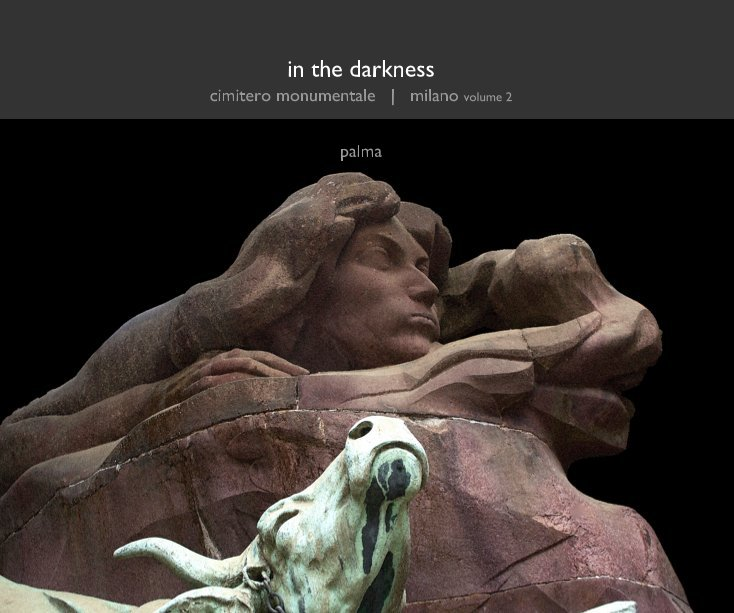 View in the darkness by James Palma