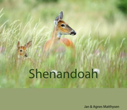 Shenandoah book cover